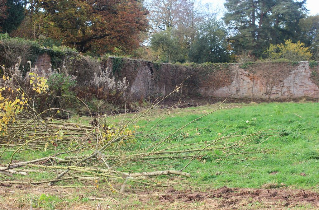 Work begins on the Walled Garden